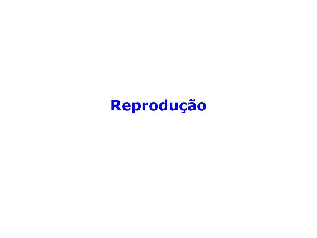 Reprodução - dá-se este nome à série de processos pelos quais os seres vivos transmitem a vida a novos indivíduos e asseguram a continuação das espécies.
