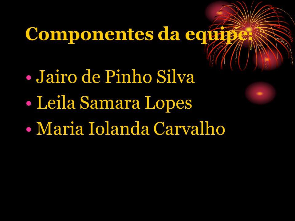 Componentes da equipe : Jairo de Pinho Silva Leila Samara Lopes Maria Iolanda Carvalho