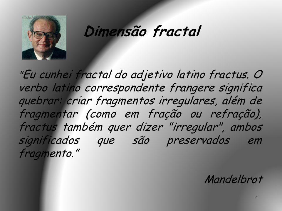 5 Consideremos o seguinte fractal