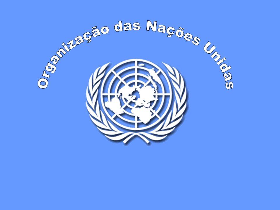 Direitos das Mulheres: responsabilidade de todos Os direitos das mulheres são direitos humanos Combate a todas as formas de violência sobre as mulheres Participação da mulher no desenvolvimento Promoção da igualdade entre os sexos Apoio às ONG e a iniciativas em favor dos direitos das mulheres