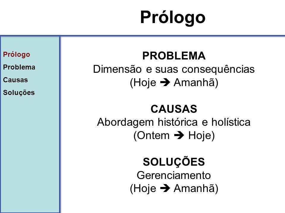 Prólogo Problema Causas Soluções Prólogo Problema Causas Soluções Prólogo FRAMEWORK Millennium Assessment - UNESCO (DPSIR) CausasProblemaSoluções DrivenPressureStateImpactResponse Conjuntura desenca- deadora (direta e indireta) Ações impactan- tes específicas Comparti- mento sócio ambiental afetado (recursos hídricos, biodiversi- dade…) Problema (impactos diretos e indiretos) Políticas públicas e/ou privadas (selos)