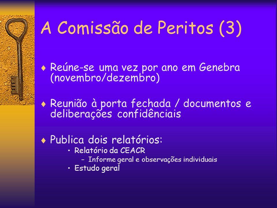 A Comissão de Peritos (3) Reúne-se uma vez por ano em Genebra (novembro/dezembro) Reunião à porta fechada / documentos e deliberações confidênciais Pu