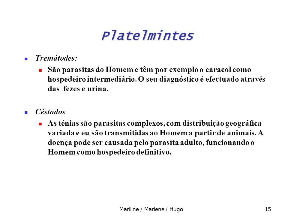 Mariline / Marlene / Hugo15 Tremátodes: São parasitas do Homem e têm por exemplo o caracol como hospedeiro intermediário. O seu diagnóstico é efectuad