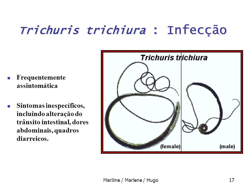 Mariline / Marlene / Hugo17 Trichuris trichiura : Infecção Frequentemente assintomática Sintomas inespecíficos, incluindo alteração do trânsito intest