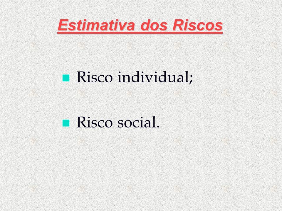 Estimativa dos Riscos n Risco individual; n Risco social.