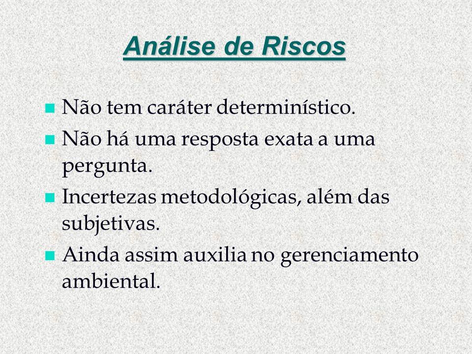 Análise de Riscos n Não tem caráter determinístico. n Não há uma resposta exata a uma pergunta. n Incertezas metodológicas, além das subjetivas. n Ain