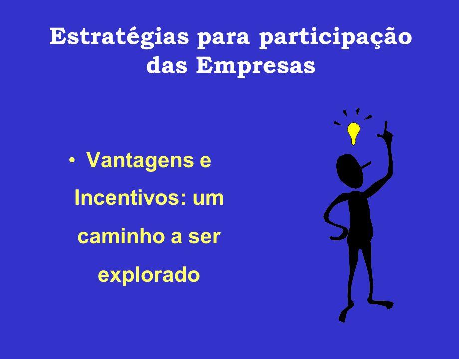 Estratégias para participação das Empresas Vantagens e Incentivos: um caminho a ser explorado