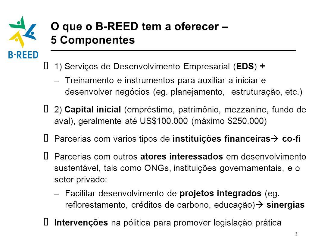3 O que o B-REED tem a oferecer – 5 Componentes 1) Serviços de Desenvolvimento Empresarial (EDS) + – Treinamento e instrumentos para auxiliar a inicia