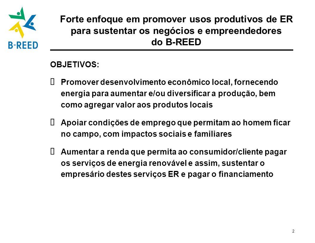 3 Usos produtivos: um papel chave na geração de renda e emprego para usuários finais e outros Modelo do B-REED Empresas de Energia Sustentável Capital inicial (B-REED / E+Co) Serviços de Desenvolvimento Empresarial-EDS Iniciativas Políticas Ferramentas/ Treinamento Empreendedores Capital para etapas futuras (Instituições financeiras) Micro-finanças Usos Produtivos: Geração de Renda e Emprego E+Co / BRASUS & IEE Clientes Rurais PNUMA / UCCEE