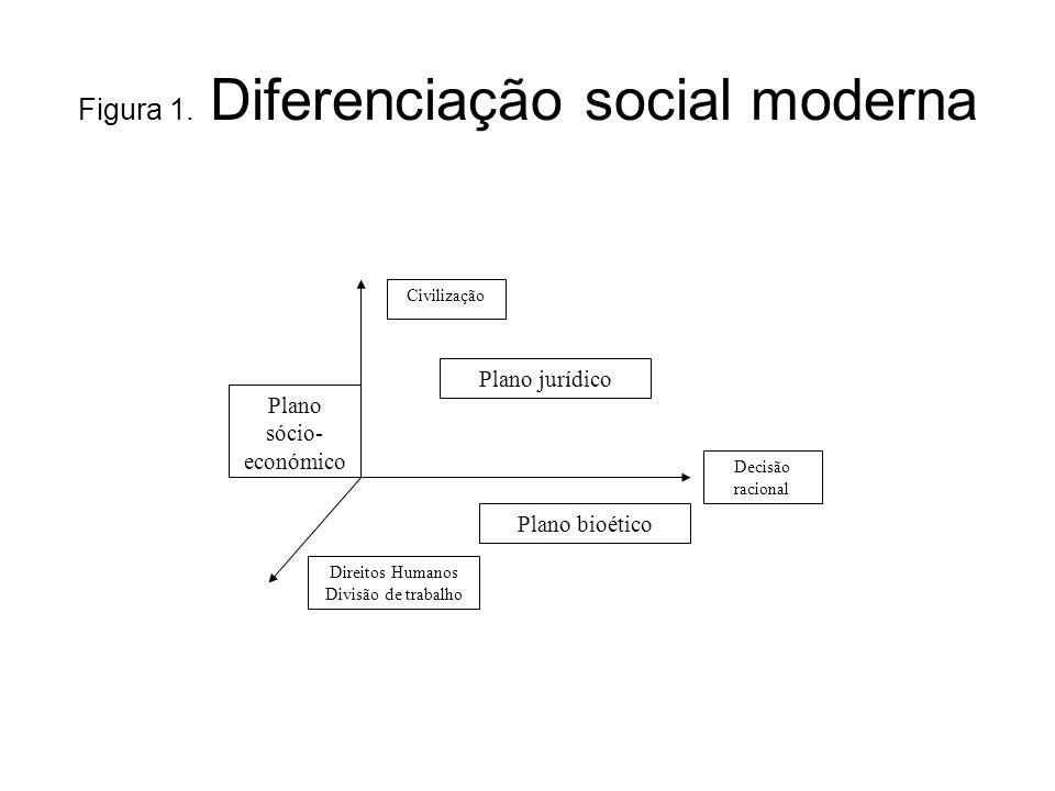 Figura 1. Diferenciação social moderna Decisão racional Civilização Direitos Humanos Divisão de trabalho Plano bioético Plano jurídico Plano sócio- ec
