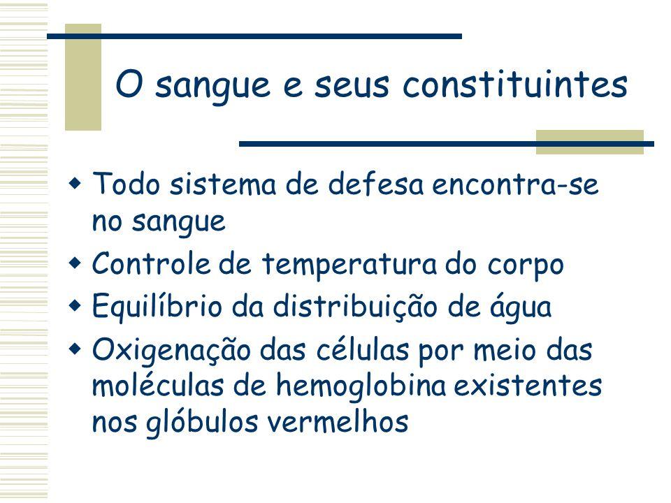 O sangue e seus constituintes Todo sistema de defesa encontra-se no sangue Controle de temperatura do corpo Equilíbrio da distribuição de água Oxigena