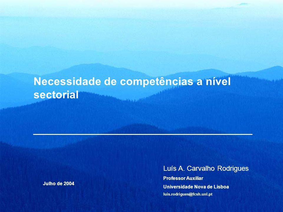 Necessidade de competências a nível sectorial Luís A. Carvalho Rodrigues Professor Auxiliar Universidade Nova de Lisboa luis.rodrigues@fcsh.unl.pt Jul