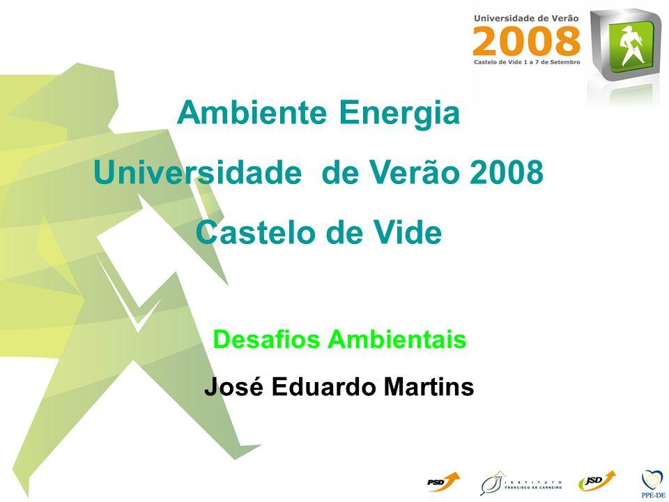 Ambiente Energia Universidade de Verão 2008 Castelo de Vide Desafios Ambientais José Eduardo Martins