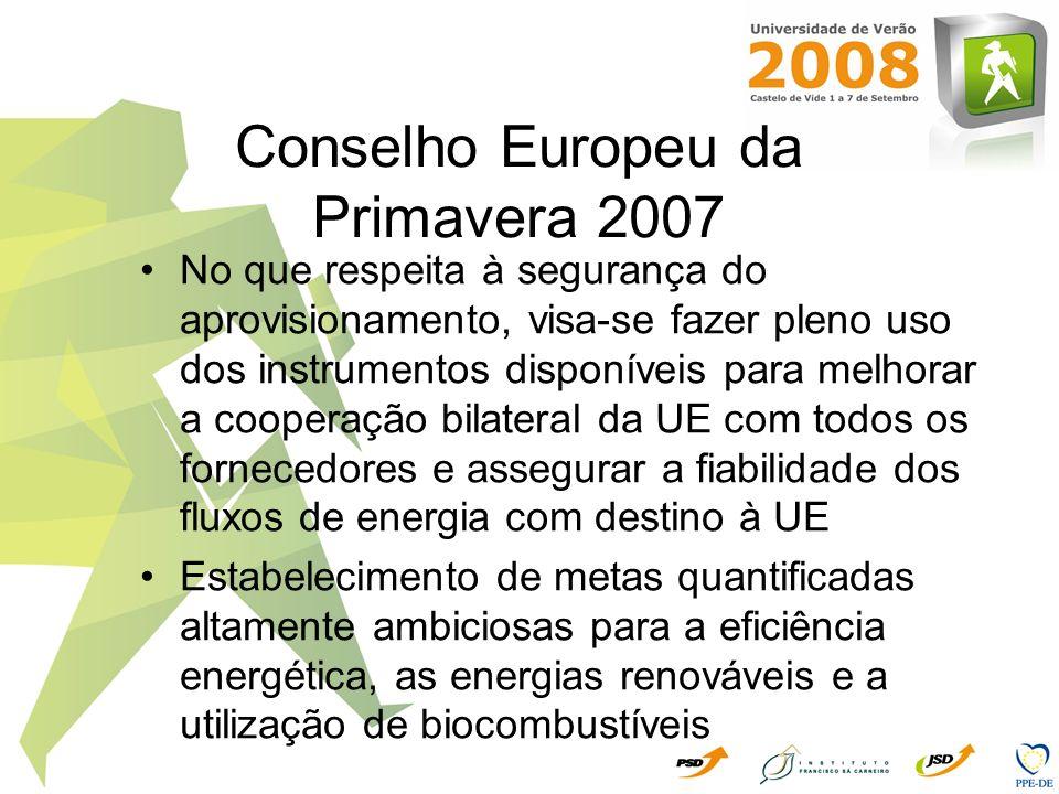 Conselho Europeu da Primavera 2007 No que respeita à segurança do aprovisionamento, visa-se fazer pleno uso dos instrumentos disponíveis para melhorar