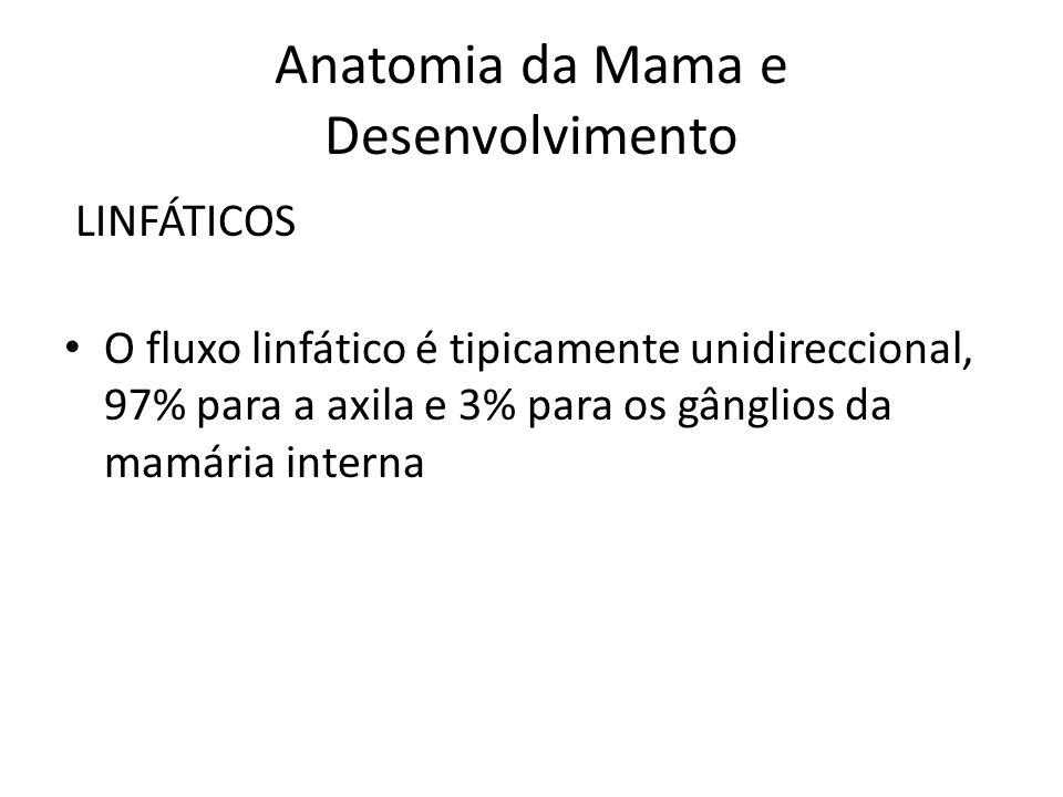 Anatomia da Mama e Desenvolvimento LINFÁTICOS O fluxo linfático é tipicamente unidireccional, 97% para a axila e 3% para os gânglios da mamária intern