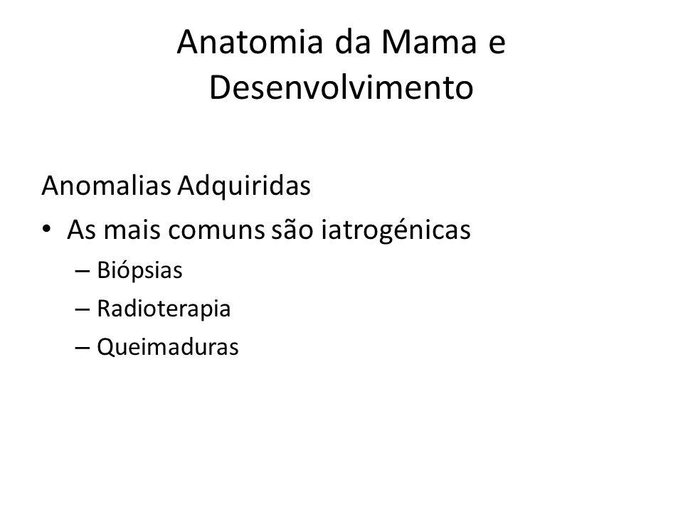 Anatomia da Mama e Desenvolvimento Anomalias Adquiridas As mais comuns são iatrogénicas – Biópsias – Radioterapia – Queimaduras