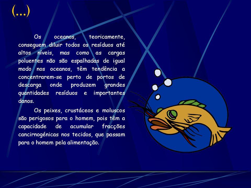 Continuação As zonas costeiras e estuários são as mais afectadas pelos hidrocarbonetos e é onde existe a maior parte das capturas pesqueiras.