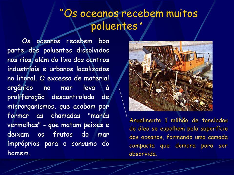 Testemunho real Desde há muito que os peritos marinhos e aquáticos argumentam que todos os novos compostos introduzidos no nosso mar e rios deveriam ser considerados potencialmente letais.