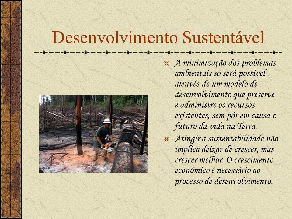 Desenvolvimento Sustentável A minimização dos problemas ambientais só será possível através de um modelo de desenvolvimento que preserve e administre