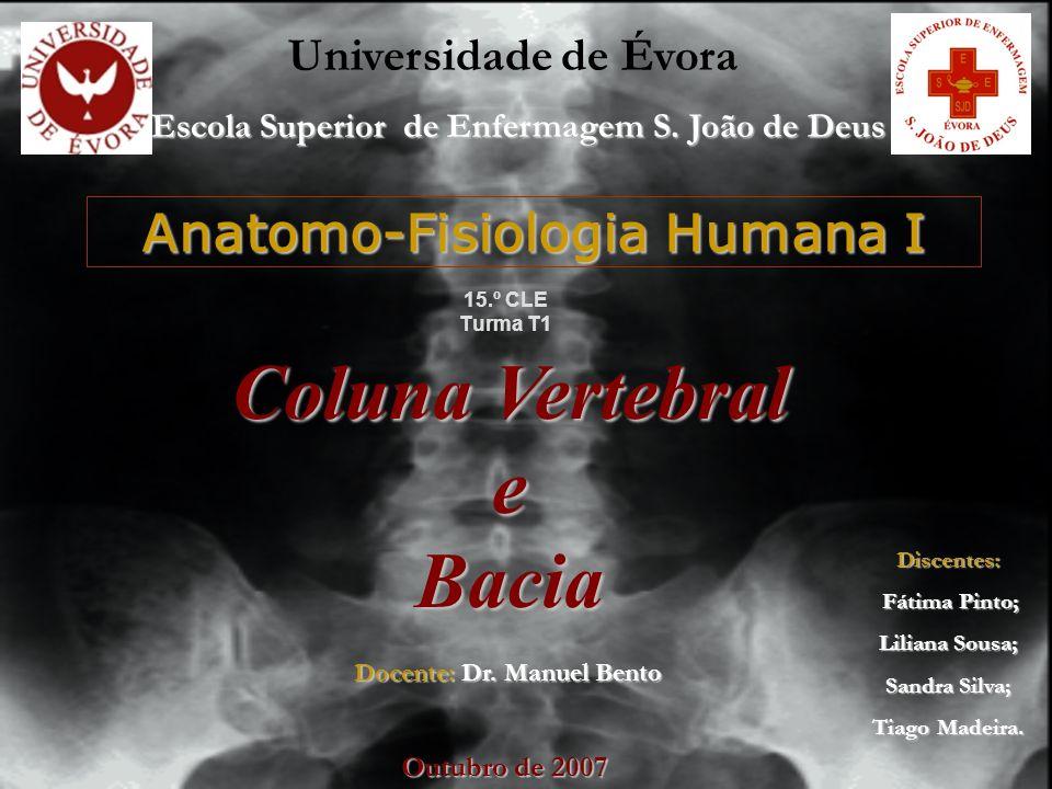 Anatomo-Fisiologia Humana I 15.º CLE Turma T1 Docente: Dr. Manuel Bento Universidade de Évora Escola Superior de Enfermagem S. João de Deus Discentes: