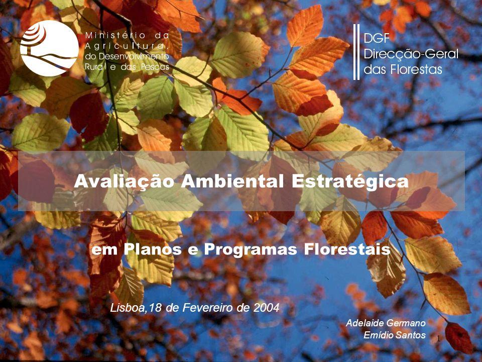 1 Lisboa,18 de Fevereiro de 2004 Adelaide Germano Emídio Santos Avaliação Ambiental Estratégica em Planos e Programas Florestais