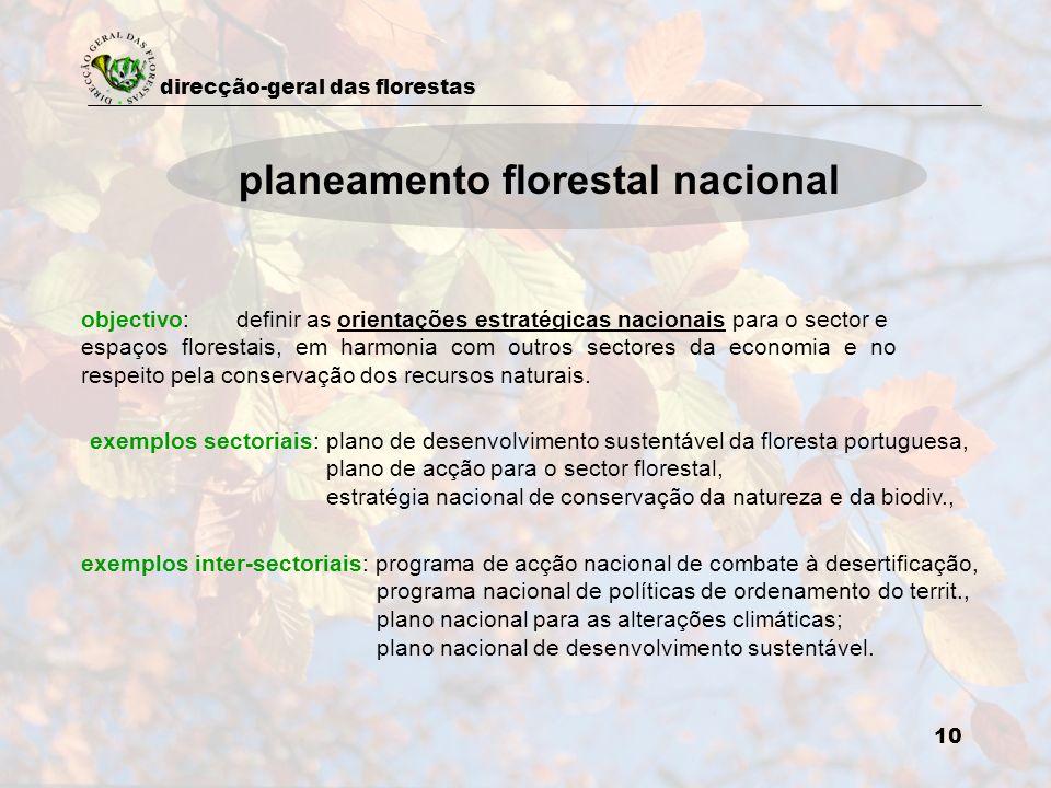 direcção-geral das florestas 10 planeamento florestal nacional objectivo: definir as orientações estratégicas nacionais para o sector e espaços flores