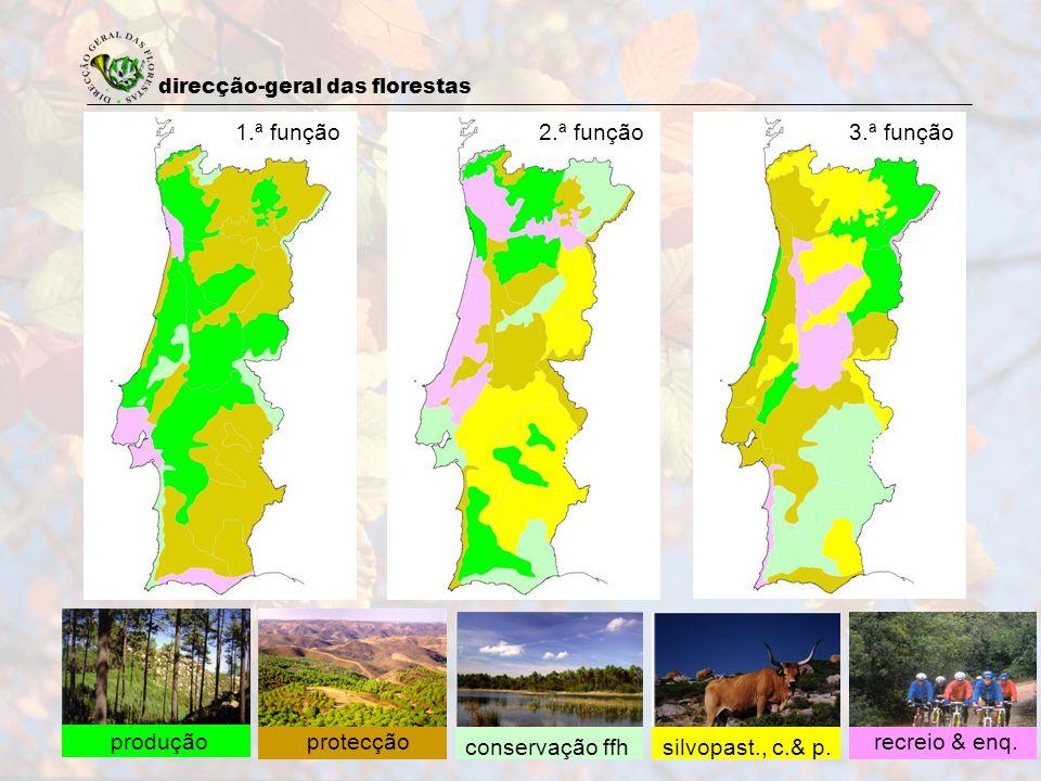 direcção-geral das florestas 13 produçãoprotecção conservação ffhsilvopast., c.& p. recreio & enq. 1.ª função2.ª função3.ª função
