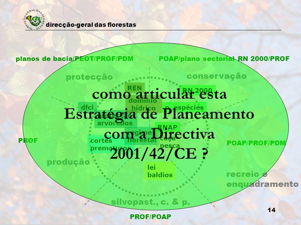 direcção-geral das florestas 14 planos de bacia/PEOT/PROF/PDMPOAP/plano sectorial RN 2000/PROF protecção conservação recreio e enquadramento POAP/PROF