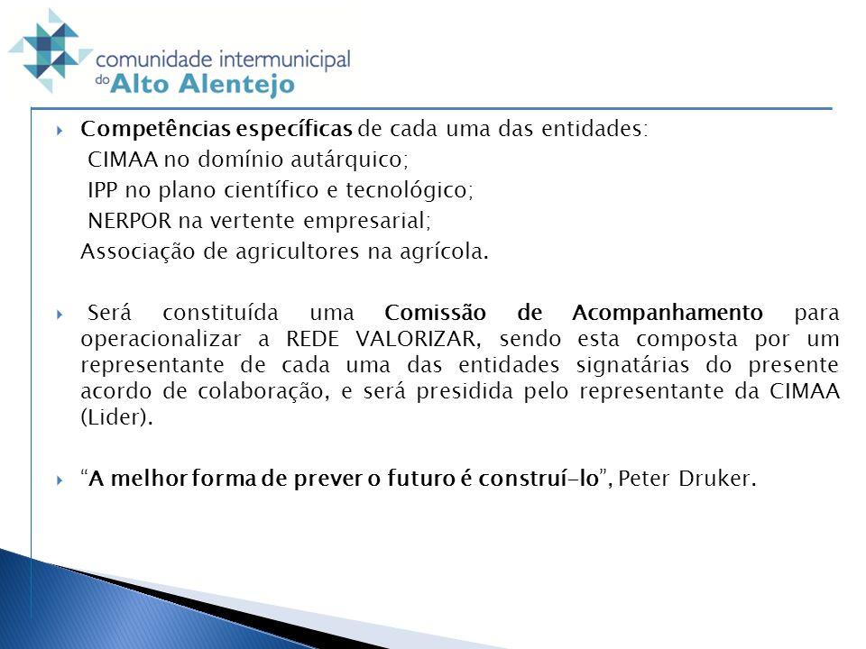 Competências específicas de cada uma das entidades: CIMAA no domínio autárquico; IPP no plano científico e tecnológico; NERPOR na vertente empresarial