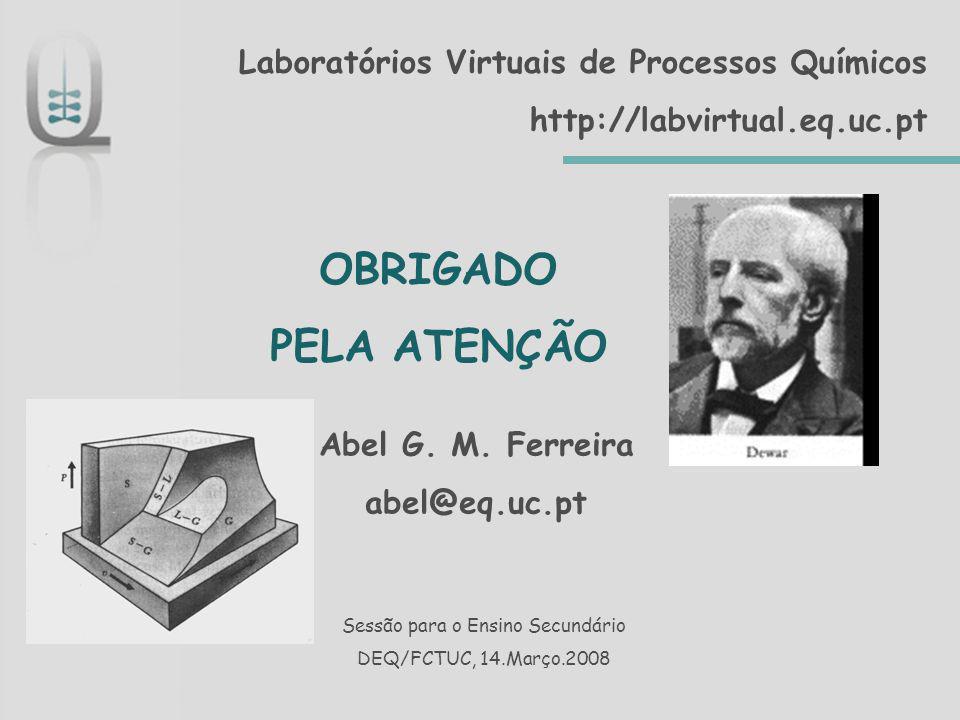 Laboratórios Virtuais de Processos Químicos http://labvirtual.eq.uc.pt OBRIGADO PELA ATENÇÃO Sessão para o Ensino Secundário DEQ/FCTUC, 14.Março.2008