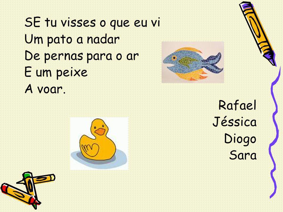SE tu visses o que eu vi Um pato a nadar De pernas para o ar E um peixe A voar. Rafael Jéssica Diogo Sara