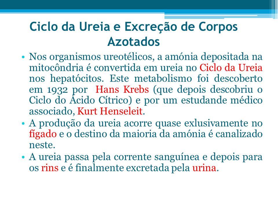 Ciclo da Ureia e Excreção de Corpos Azotados Nos organismos ureotélicos, a amónia depositada na mitocôndria é convertida em ureia no Ciclo da Ureia no
