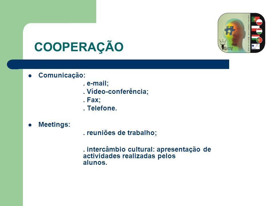 Comunicação:. e-mail;. Vídeo-conferência;. Fax;. Telefone. Meetings:. reuniões de trabalho;. intercâmbio cultural: apresentação de actividades realiza
