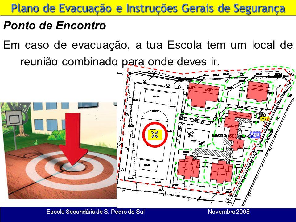 Escola Secundária de S. Pedro do Sul Novembro 2008 Sinaleiro Não pares nas saídas. Nos pontos críticos (escadas e saídas) há um sinaleiro. Segue sempr
