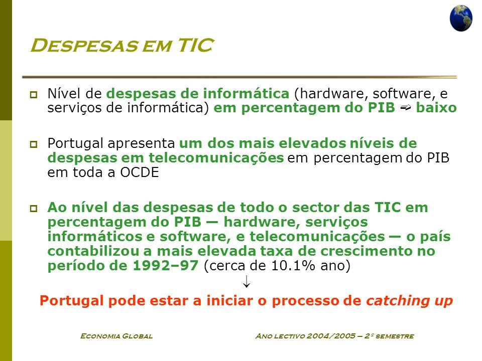 Economia Global Ano lectivo 2004/2005 – 2º semestre Despesas em TIC Nível de despesas de informática (hardware, software, e serviços de informática) e