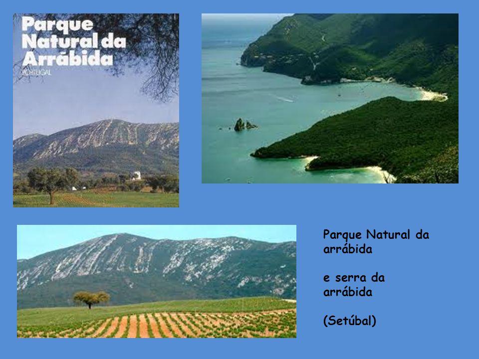 Parque Natural da arrábida e serra da arrábida (Setúbal)