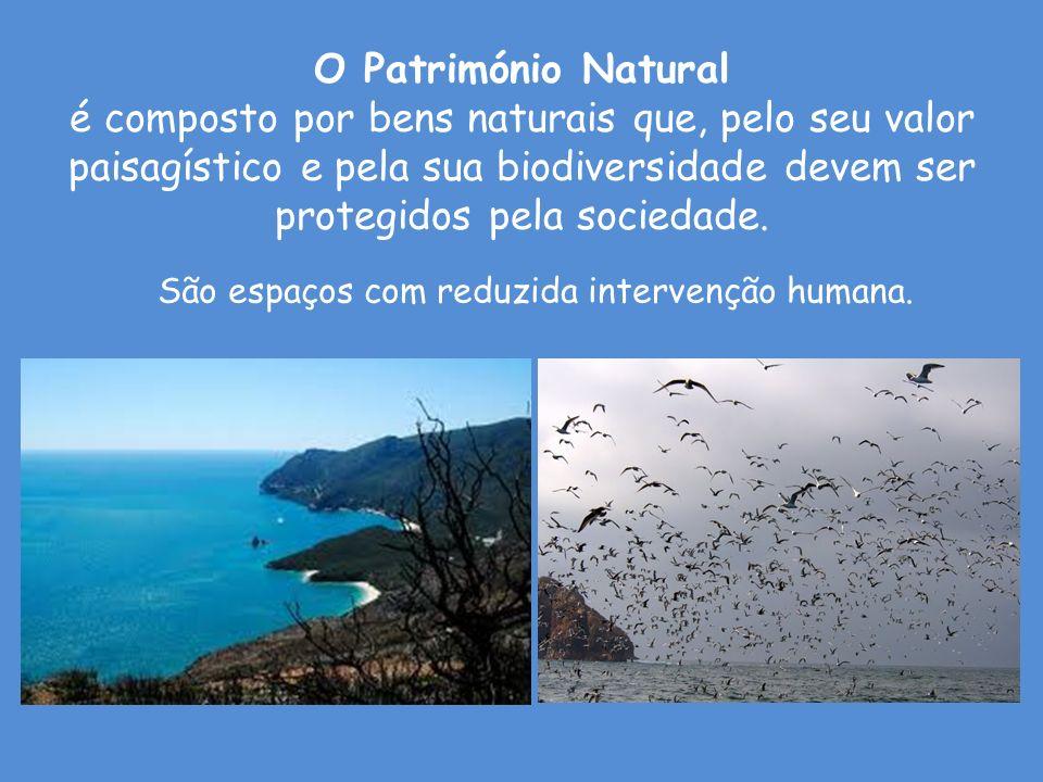 O Património Natural é composto por bens naturais que, pelo seu valor paisagístico e pela sua biodiversidade devem ser protegidos pela sociedade. São