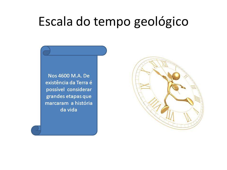 Escala do tempo geológico Nos 4600 M.A. De existência da Terra é possível considerar grandes etapas que marcaram a história da vida
