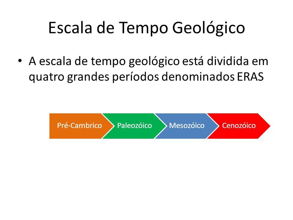 A escala de tempo geológico está dividida em quatro grandes períodos denominados ERAS Pré-CambricoPaleozóicoMesozóicoCenozóico