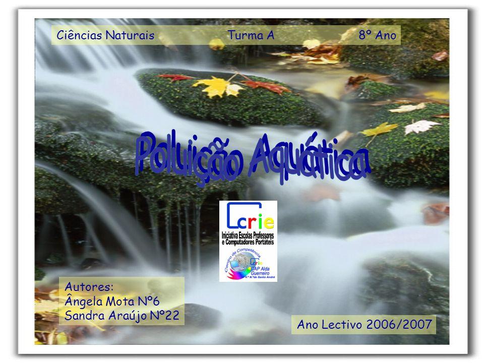 Ciências Naturais Turma A 8º Ano Ano Lectivo 2006/2007 Autores: Ângela Mota Nº6 Sandra Araújo Nº22