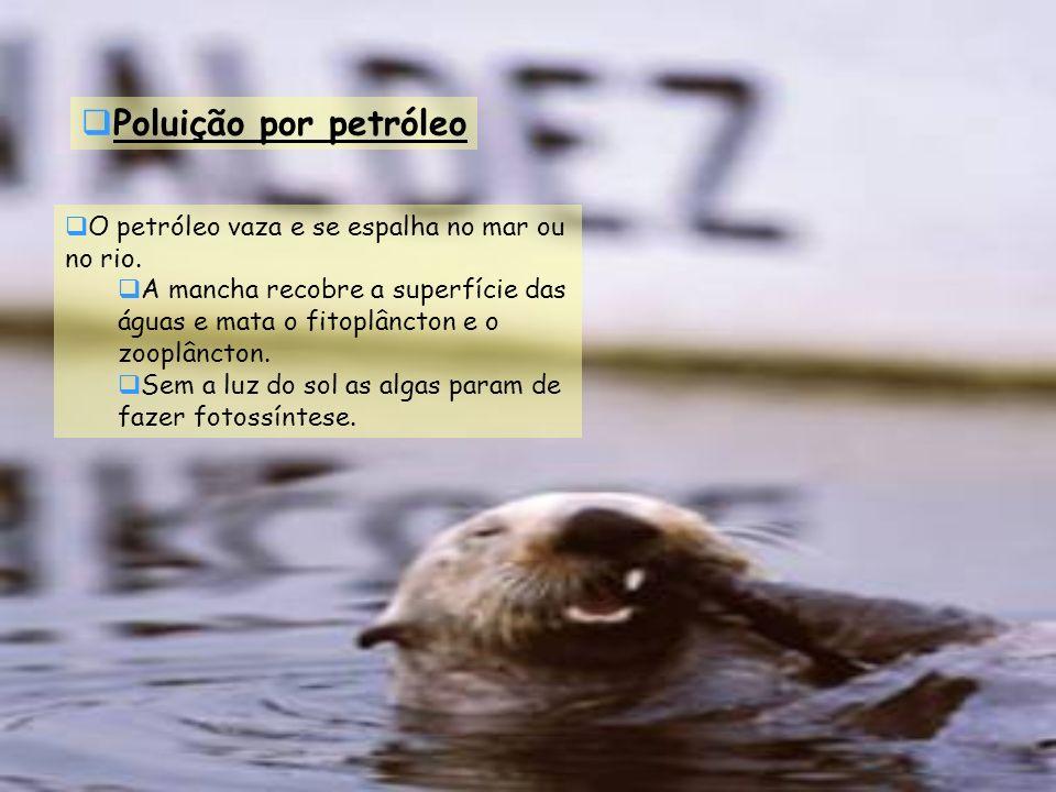 Poluição por petróleo O petróleo vaza e se espalha no mar ou no rio. A mancha recobre a superfície das águas e mata o fitoplâncton e o zooplâncton. Se