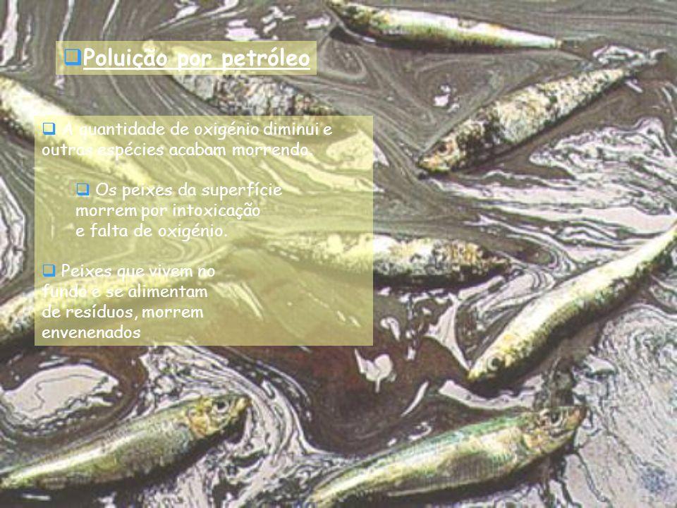 A quantidade de oxigénio diminui e outras espécies acabam morrendo. Os peixes da superfície morrem por intoxicação e falta de oxigénio. Peixes que viv