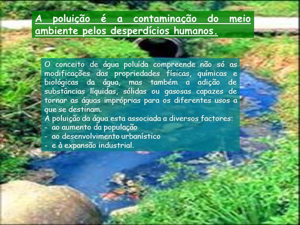 A poluição da água pode ter várias origens: Térmica ; Biológica ; Sedimentar ; Química.