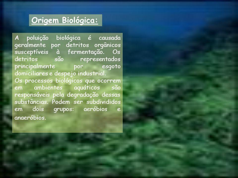 Origem Biológica: A poluição biológica é causada geralmente por detritos orgânicos susceptíveis à fermentação. Os detritos são representados principal