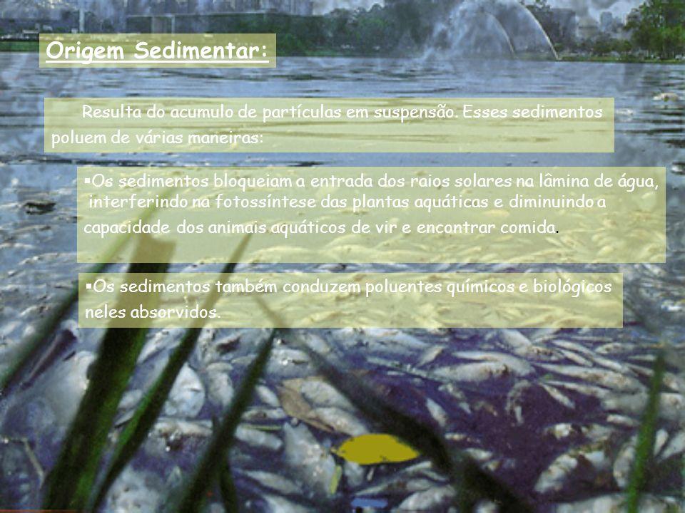 Origem Sedimentar: Resulta do acumulo de partículas em suspensão. Esses sedimentos poluem de várias maneiras: Os sedimentos bloqueiam a entrada dos ra
