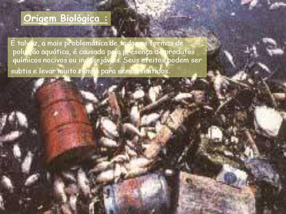 Origem Biológica : É talvez, a mais problemática de todas as formas de poluição aquática, é causada pela presença de produtos químicos nocivos ou inde