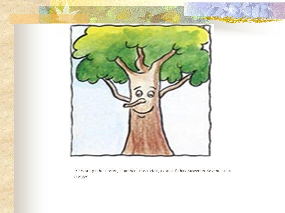 A árvore ganhou força, e também nova vida, as suas folhas nasceram novamente a crescer.