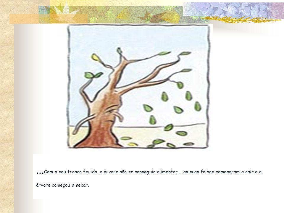 ... Com o seu tronco ferido, a árvore não se conseguia alimentar, as suas folhas começaram a cair e a árvore começou a secar.