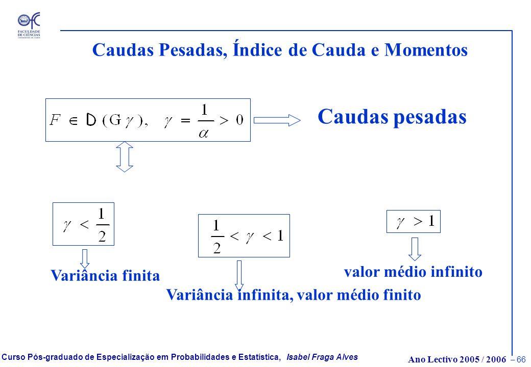 Ano Lectivo 2005 / 2006 – 65 Curso Pós-graduado de Especialização em Probabilidades e Estatística, Isabel Fraga Alves Caudas Pesadas ou Leves ? Fazemo