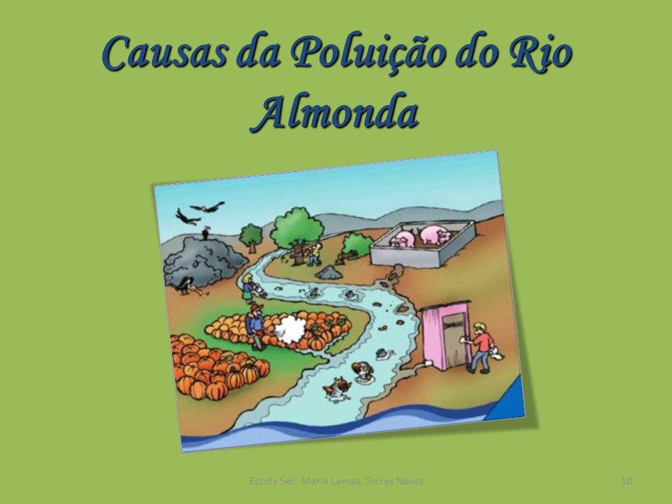 Causas da Poluição do Rio Almonda 10Escola Sec. Maria Lamas, Torres Novas